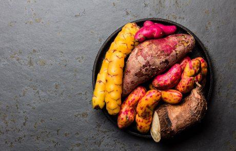Varietà di tuberi tipici delle Ande (yuca, camote e altri tipi di patate dolci).