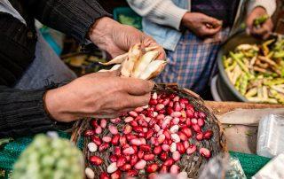 Prodotti della terra del mercato di Pasto, Nariño, Colombia.
