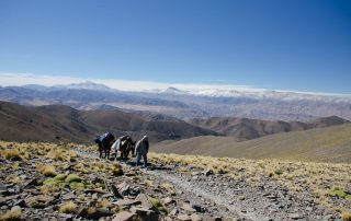 Capillas Mesadas, Salta, Argentina. Tratto Santa Rosa de Tastil